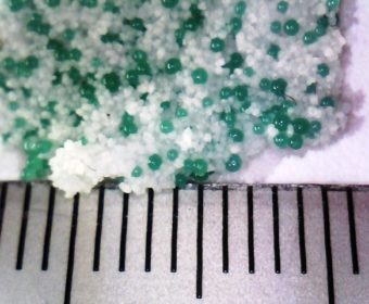 Microbeads ban in Wales